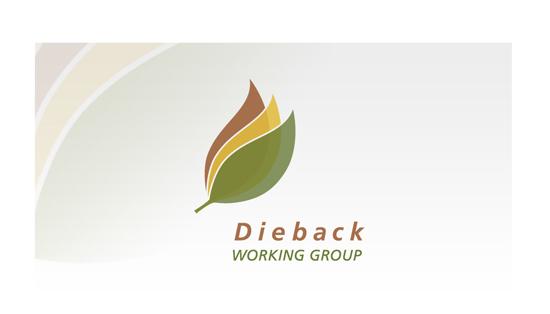 DIEBACK WORKING GROUP